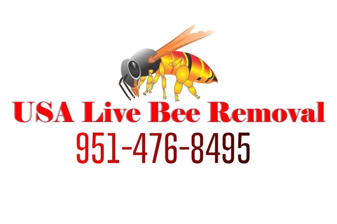 San Bernardino Save Bees