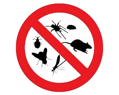 Pest Control in the Inland Empire, CA