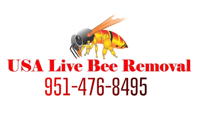 USA Live Bee Removal- Bee Removal Services- Inland Empire