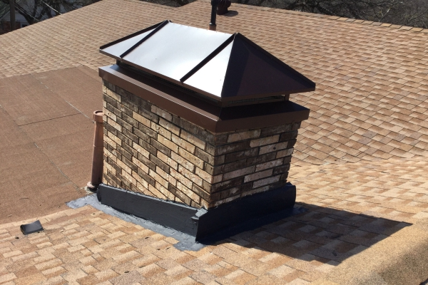 Chimney Bee Removal Services